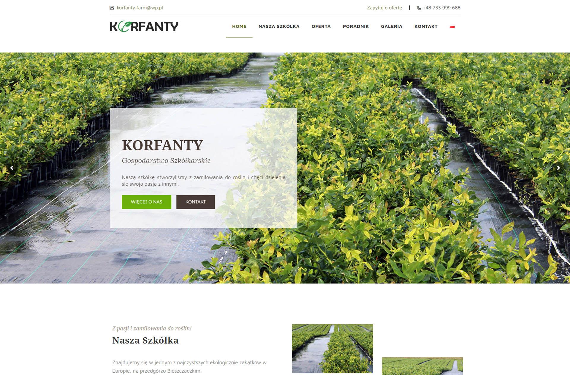 Strona www Korfanty.com.pl